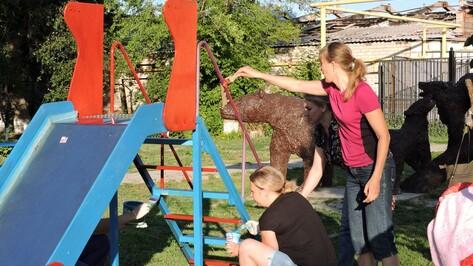 В Кантемировке родители малышей провели субботник в детском парке