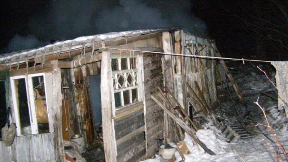 Житель Рамонского района сгорел вместе с домом