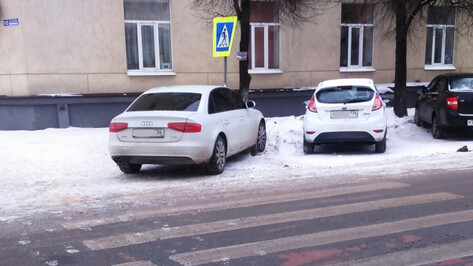 В Воронеже водителя Audi оштрафовали за тонировку после сообщений СМИ