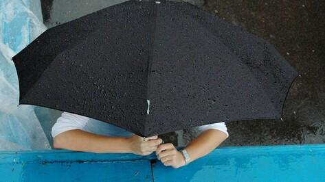 Грозовые дожди прольются на Воронеж в первомайские выходные