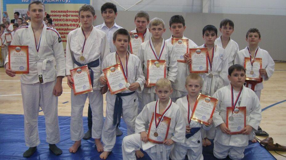 Рамонские «Богатыри» заняли 11 призовых мест на турнире по джиу-джитсу