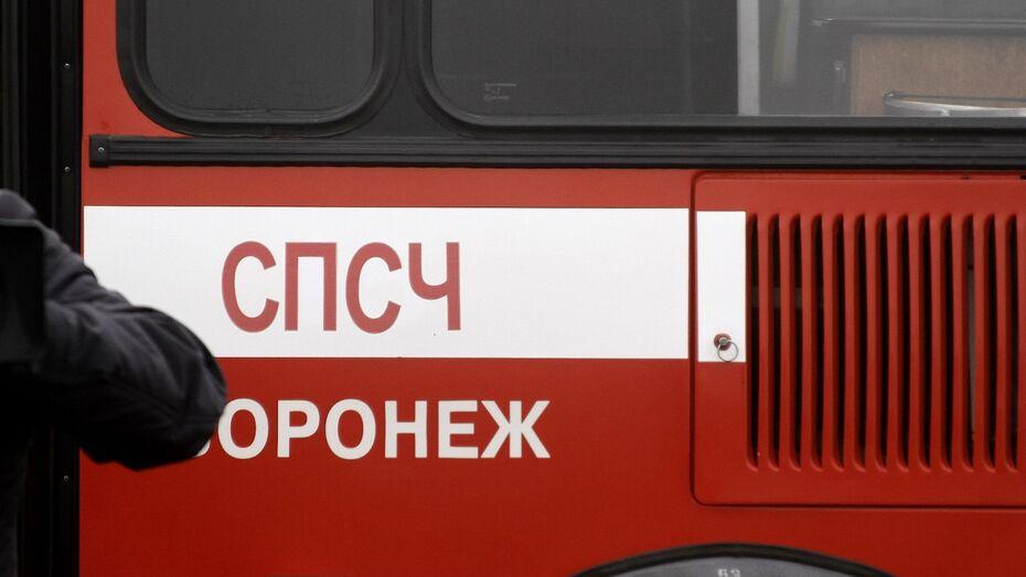 В Воронеже подросток поджег 3 автомобиля