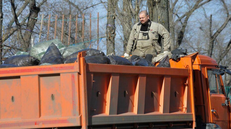 С воронежских кладбищ вывезли 3,4 тыс кубов мусора