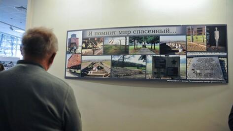 В День освобождения узников концлагерей к воронежцам обратились губернатор и спикер облдумы
