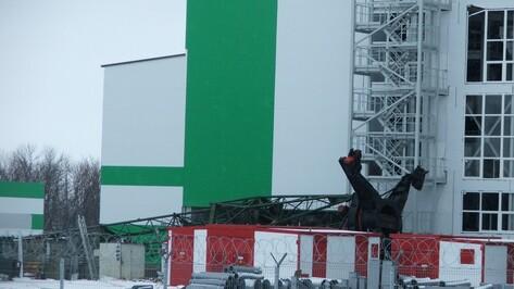 В Воронежской области при падении башенного крана на стройке завода пострадала работница