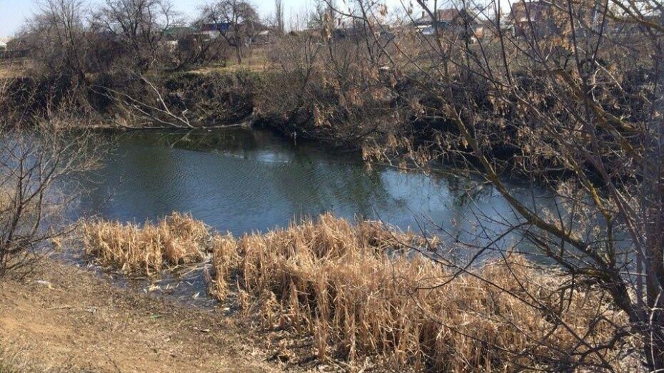Воронежской области выделят 43 млн рублей на восстановление водных объектов