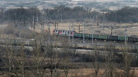 В Воронежской области на время дачного сезона запустят 7 электричек
