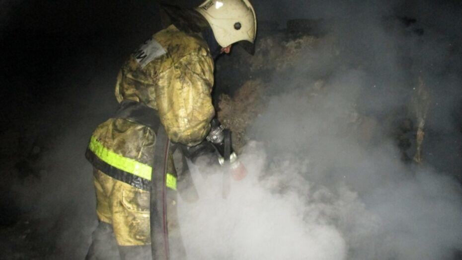 В Воронежской области на пожаре нашли тела двух мужчин
