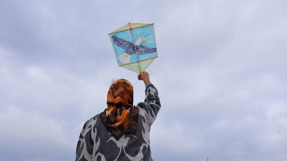Фестиваль воздушных змеев пройдет на Адмиралтейской площади Воронежа