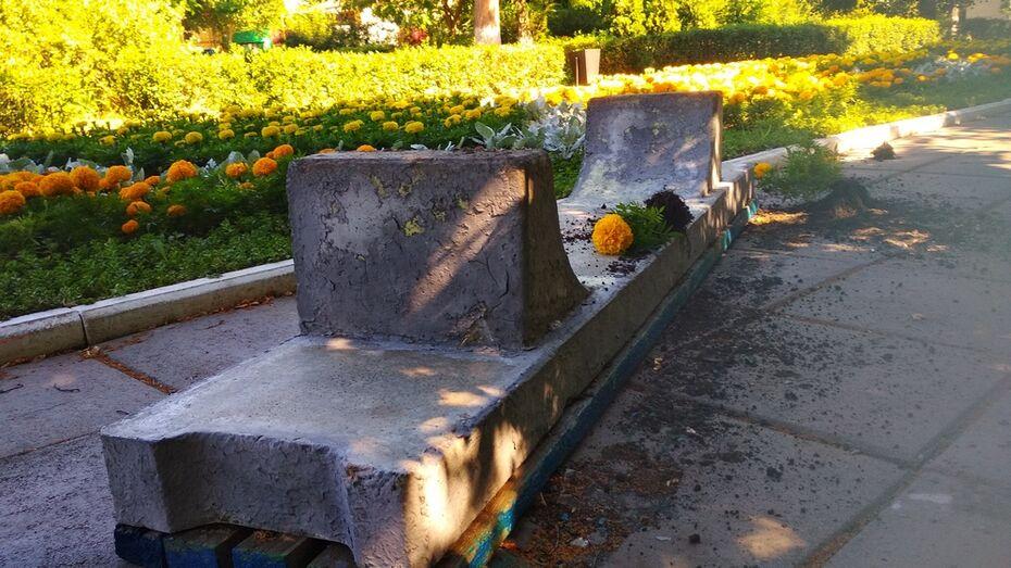 В Павловске вандалы порвали флаг и сломали деревья в городском сквере