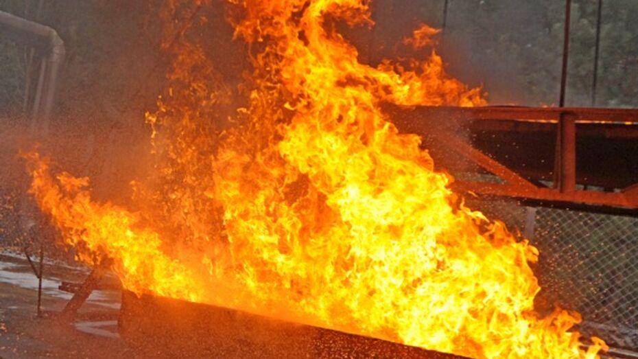 В Таловском районе в огне погиб мужчина