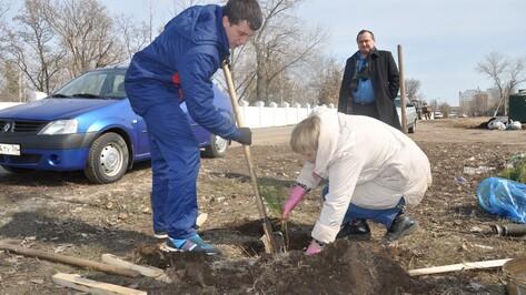 В Павловске прошел первый весенний субботник