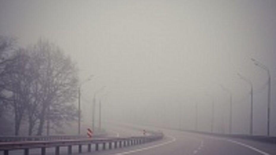 Из-за тумана в Воронеже парализована работа аэропорта