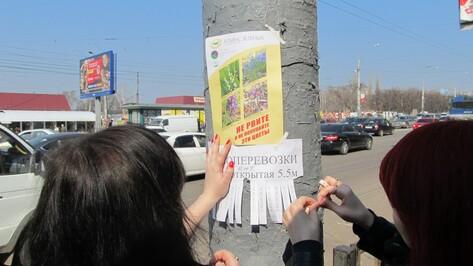 Воронежцев просят не срывать первые весенние цветы