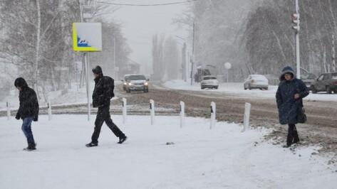 Воронежцев ждет снежная погода на новой неделе