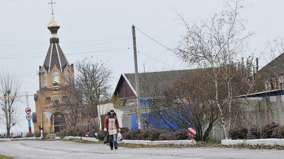 Более 1,3 млрд рублей вложат в 2020 году в развитие сел Воронежской области