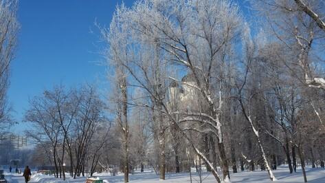 Плюсовая температура в Воронеже установится лишь в конце рабочей недели