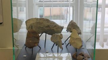 Проект воронежского «Дивногорья» представят в музее-заповеднике Астрахани