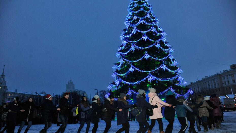 Новогодняя ночь в Воронеже будет морозной и снежной