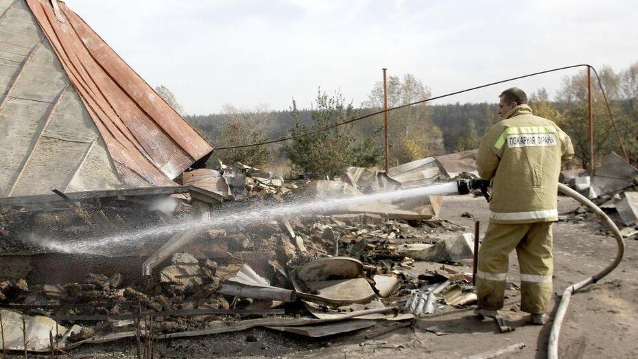 Два человека погибли на пожарах в Воронежской области