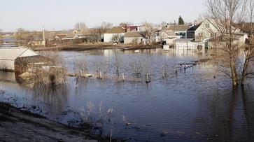 Воронежская область подготовится к возможным весенним паводкам