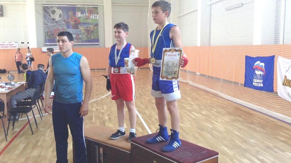 Хохольские боксеры завоевали 4 медали на областном турнире