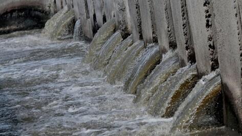 Руководство очистных сооружений пообещало устранить неприятный запах в Воронеже