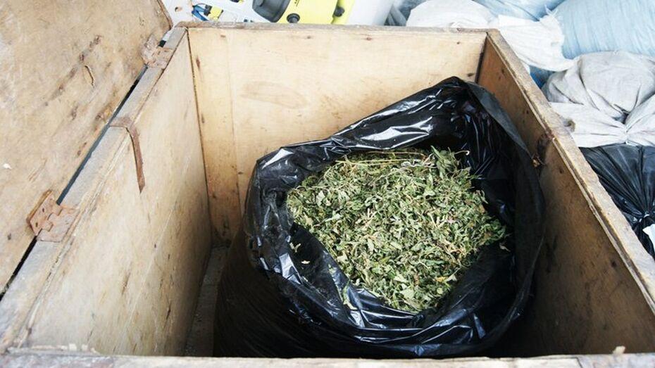 Житель Лискинского района получил условный срок за хранение марихуаны