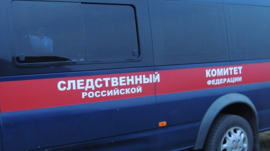 Жительница Воронежской области жестоко избила 6-месячного сына за плач