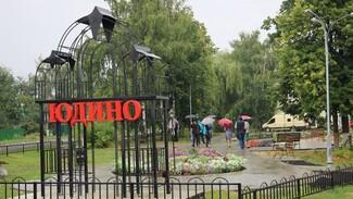 Подгоренское Юдино поборется за 1 млн рублей в областном конкурсе «Самое красивое село»