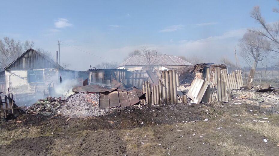 Ландшафтный пожар под Воронежем приблизился к жилым домам