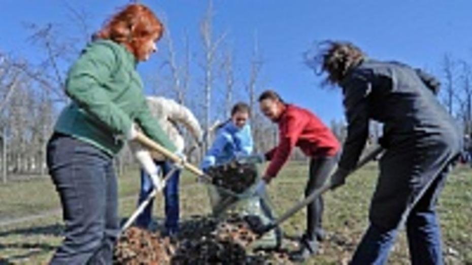Осенние субботники в Воронежской области пройдут 25 октября