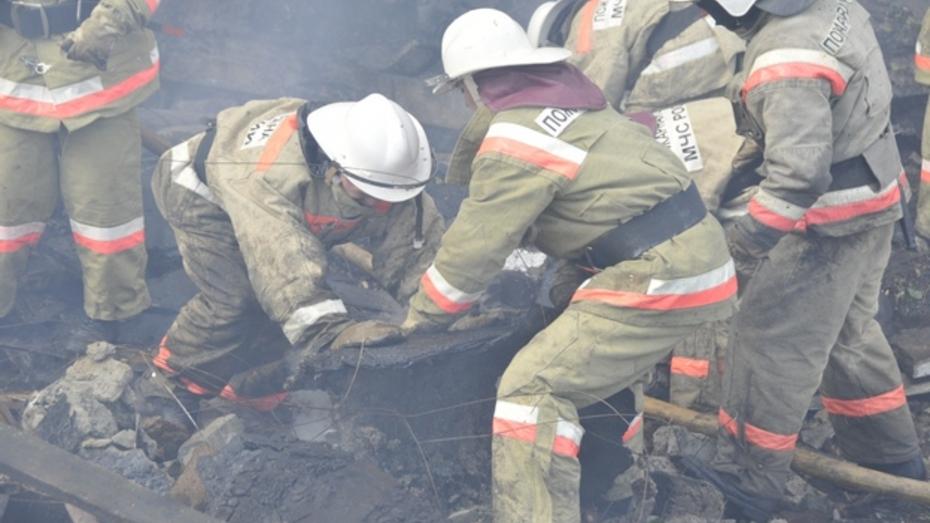 В Каширском районе на пожаре погиб ребенок