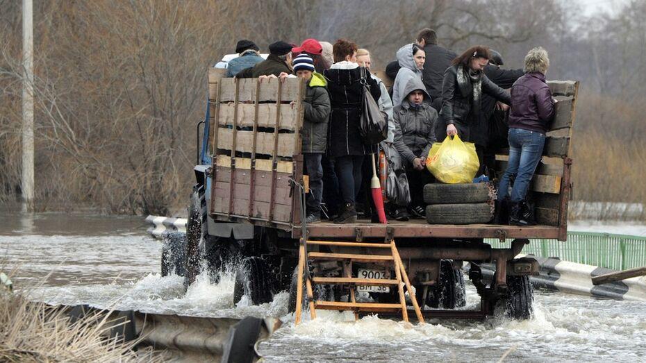 В Воронежской области весной 2015 года под угрозой подтопления окажутся 977 домов