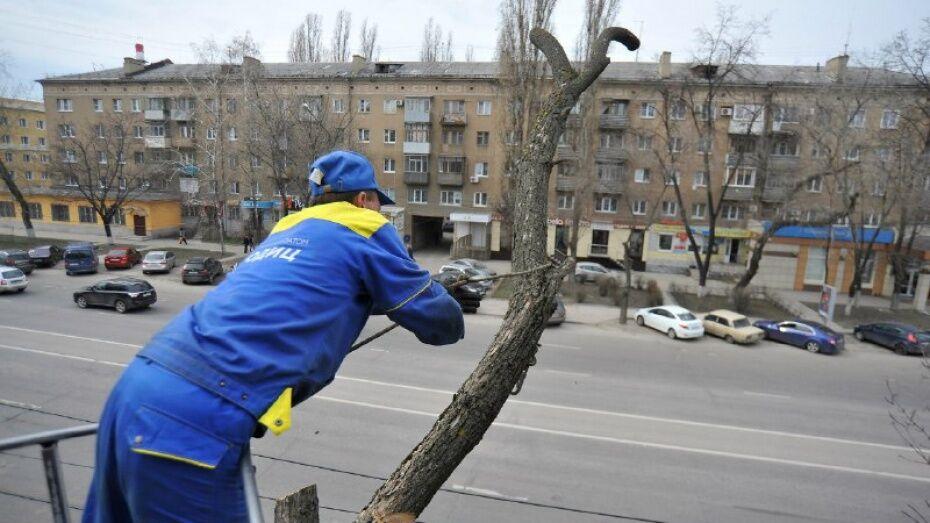 В Воронеже проезд по участку улицы Степана Разина ограничат 2 июня