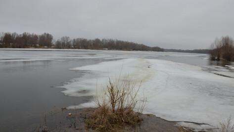 В Воронежской области рыбак на глазах у друга провалился под лед и утонул
