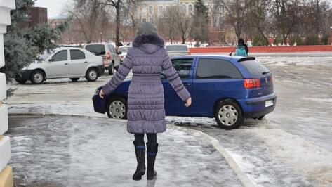 На ликвидацию последствий ледяного дождя в Богучарском районе выехало 38 единиц техники