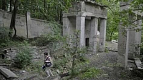Первый этап реконструкции воронежского парка «Динамо» городские власти хотят завершить в 2015 году