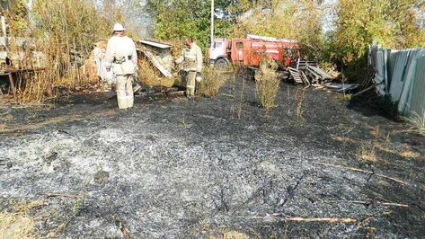 В Подгоренском районе выгорело полгектара поля