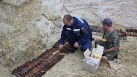 Под Воронежем подрывники за раз уничтожили 600 боеприпасов