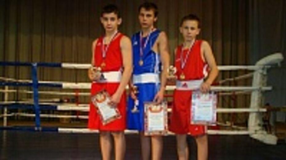 Трое каширских боксеров привезли домой «золотые перчатки» со Всероссийского турнира по боксу