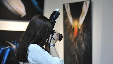 Фотовыставку о красоте и разнообразии России представят воронежцам