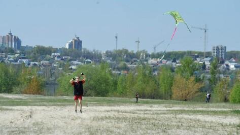 Воронежские школьники запустят в небо самодельных воздушных змеев