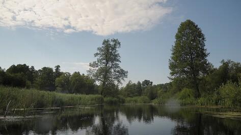 В Воронежской области восстановят историческое русло реки Битюг