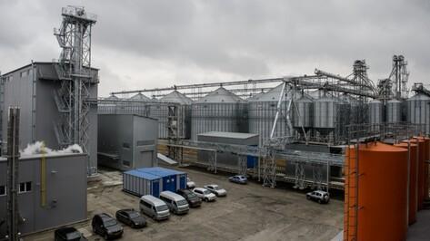 В Воронежской области заработал комбикормовый завод