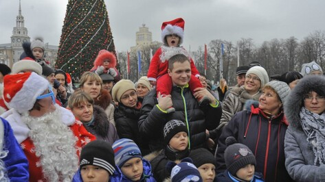 Воронеж вошел в топ-20 городов России для новогодних поездок