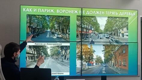 Равняться на Париж. В Воронеже обсудили проблему озеленения города