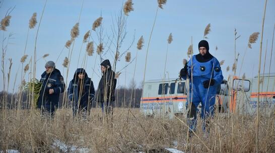Поиски провалившегося в феврале под лед мальчика возобновили в Воронежской области