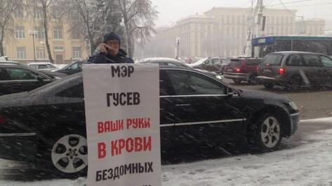Воронежский зоозащитник провел одиночный пикет у мэрии