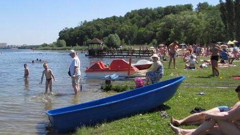 Власти Воронежской области поддержат проект пляжа для инвалидов